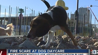 Fire scare at downtown Las Vegas dog daycare center - Video