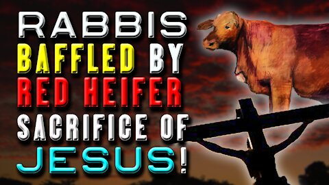 BEAUTIFUL! How the Red Heifer Points to Jesus' Three Ascensions | JPDWeekly 24