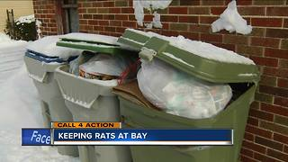 Call 4 Action: Avoiding a rat problem