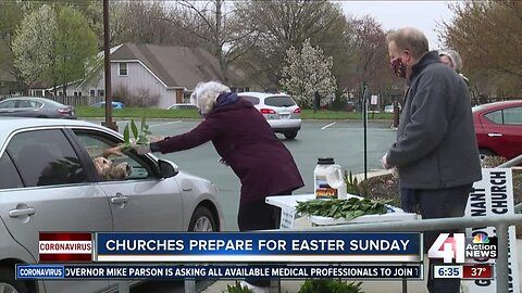 Organizations handing out palms for Sunday service