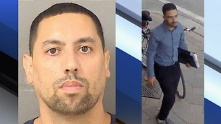 Alleged rental scam busted, according to the Palm Beach County Sheriff's Office - Video