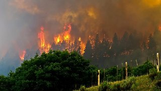 More Than 1,800 Homes Evacuated In Southwest Colorado Fire - Video