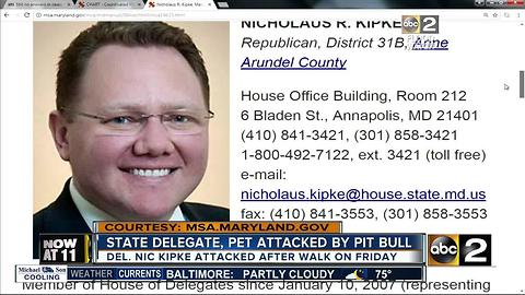 State Delegate attacked by pit bull