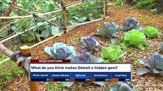 Detroit named one of the 'under-the-radar cities you need to visit' - Video