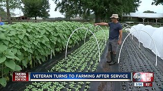 Veteran turns to farming after service