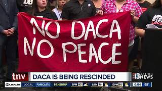 Attorney working to help valley DACA recipients after decision - Video