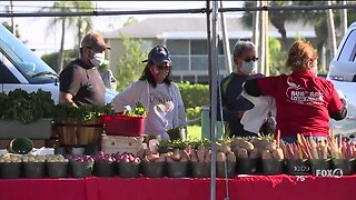 Cape Coral Farmers Market Open