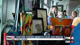 Spooktacular contest raises money for dog rescue - Video