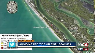 Avoiding red tide on SWFL beaches