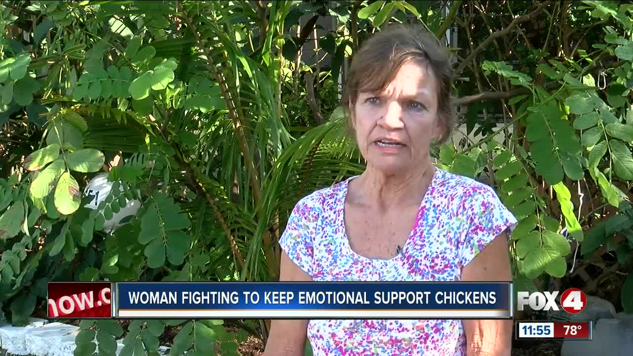 Fort Myers woman fighting to keep her emotional support chickens