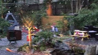 Young Girl Delights in Seeing Snow for the First Time in Florida - Video