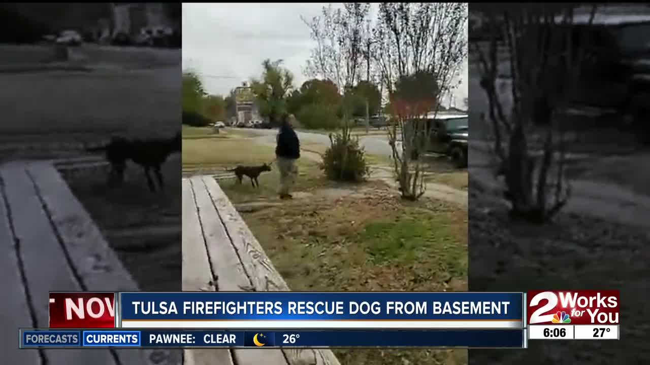 Tulsa Firefighters rescue dog from basement
