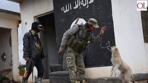 Coalition Will Not Engage Remaining Isis Fighters In Syria