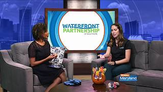 Waterfront Partnership of Baltimore - Video