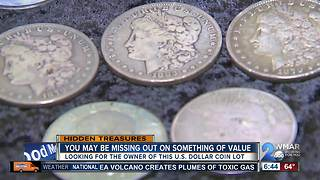 Are you missing this U.S. dollar coin lot? - Video