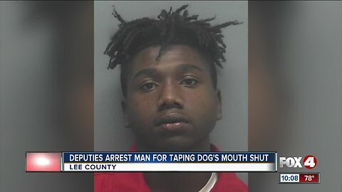 Man arrested for allegedly taping dog's mouth shut