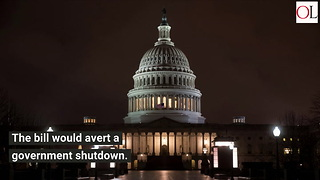 House Passes Massive $1.3 Trillion Spending Bill - Video