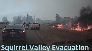Video Shows Horses Being Evacuated from California's Erskine Fire - Video