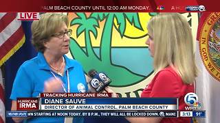 Palm Beach County Animal Care and Control says people are abandoning their pets over Hurricane Irma - Video