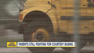 Parents still fighting to get courtesy busing back for kids in Hillsborough County - Video