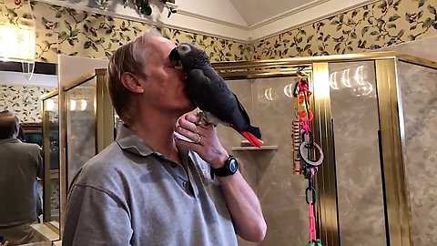 Parrot And Owner Share Very Special Bond