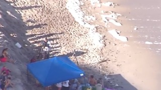 Wildlife officials attend to beached whale in Juno Beach - Video