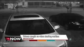 Thieves caught on video stealing mailbox - Video