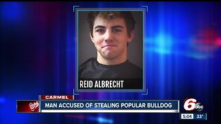 22-year-old accused of stealing popular skateboarding bulldog named Gus from Carmel - Video