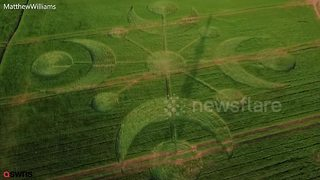 Mysterious travellers visited the English countryside and left behind the biggest crop circle of the year - Video