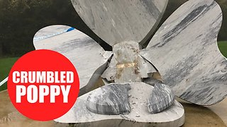 Large marble poppy memorial for fallen soldiers collapses overnight - Video
