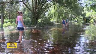 Withlacoochee River flood waters rise, residents urged to evacuate fear outcome - Video