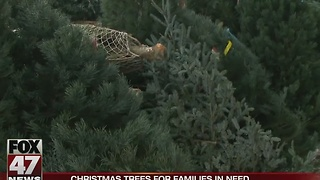 Lansing Gardens give Christmas trees to families in need - Video