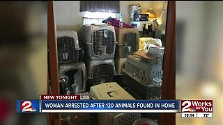 More than 120 animals found in dog trainer's home - Video