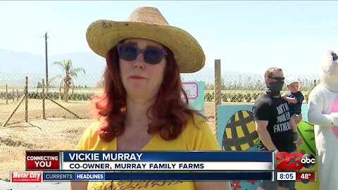 Murray Family Farm Easter surprise