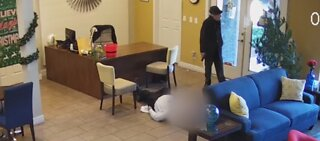 Vegas police release video footage of apartment shooting