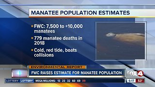FWC: Manatees more abundant than previously thought