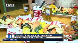 Stone Crab season reopens in Southwest Florida - Video