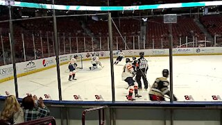 Greenville Swamp Rabbits: John Lethemon #30 with the save.