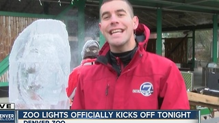 7News at 11AM -- Zoo Lights - Video