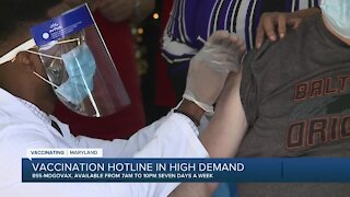 Vaccination hotline in high demand