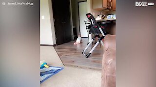 Smart vacuum cleaner scares curious baby!