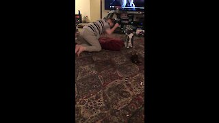 Cat Incredibly Consoles Boy With Special Needs During Meltdown
