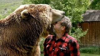 Wrestling A Grizzly Bear In My Garden - Video