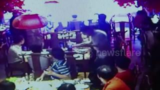 Huge rat falls from ceiling onto restaurant table - Video