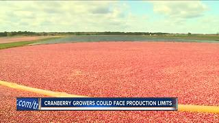 Cranberry growers could face production limits