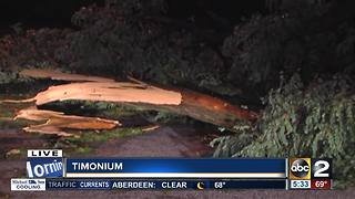 Teen dead after tree falls on car during storm - Video