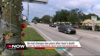 Mother continues fight for zero deaths along Busch Blvd - Video