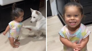 Little girl adorably trains her doggy to do tricks