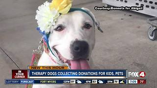 Therapy dogs collecting donations for needy kids, pets in SWFL - Video