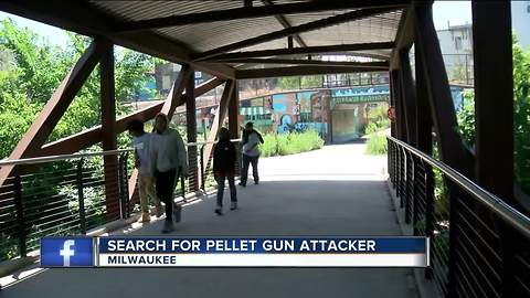 Businesses on edge after pellet gun shooting